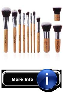makeup brush set with instructions